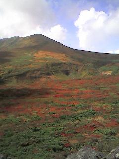 栗駒山紅葉